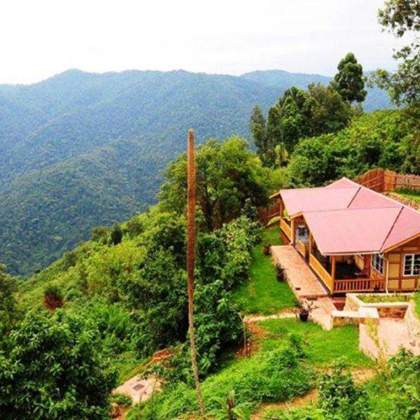 Nkuringo-Bwindi-Gorilla-Lodge